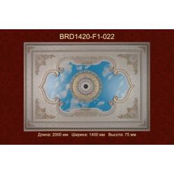 Потолочный цветной купол BRD1420-F1-022